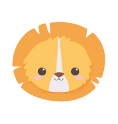 cute little lion face animal cartoon isolated vector image