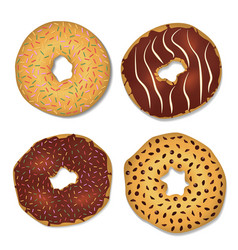 Four donut decorated with chocolate chips and vector