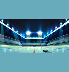 hockey arena ice rink with puck vector image