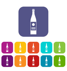 wine bottle icons set vector image