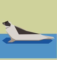 flat design harp seal vector image