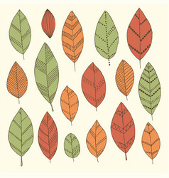 beautiful set doodle vintage leaves isolated vector image