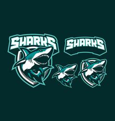 sharks mascot logo design vector image