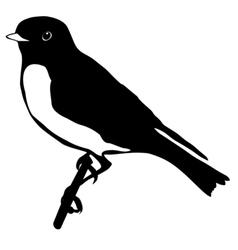 black silhouette of bluebird vector image