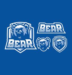 bear mascot logo design vector image