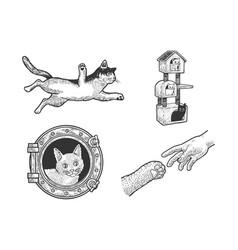 cat set sketch vector image