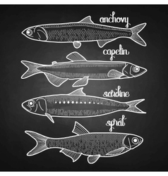 Graphic small fish collection vector image