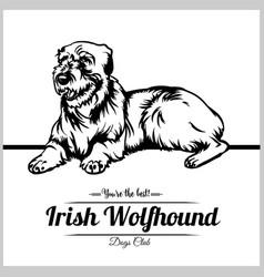 Irish wolfhound dog - for t vector