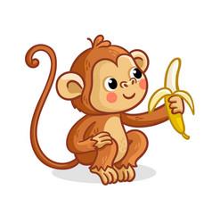 monkey on a white background eats a banana vector image