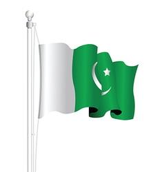 pakistan flag vector image