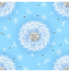 seamless pattern blue with flowers dandelions vector image