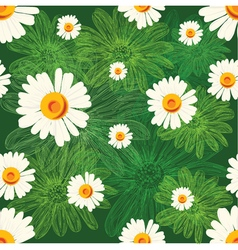 Seamless pattern with chamomiles on green vector