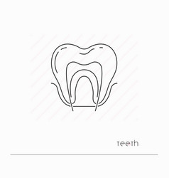 Tooth icon isolated vector