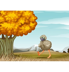An ostrich near the big tree vector image
