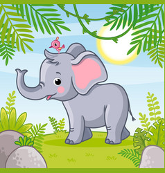 Baby elephant stands in a clearing vector