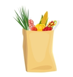 Fruits and vegetables in brown grocery bag vector