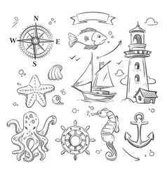 hand drawn sea marine objects and ocean animals vector image