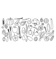 hand drawn set healthy food set vector image