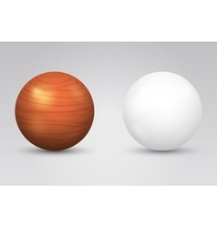 Realistic white ball and wooden sphere vector image