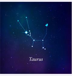 taurus sign stars map zodiac constellation on vector image