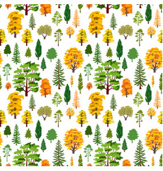 Autumn forest trees pattern a woodland background vector