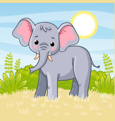 elephant stands in savannah vector image