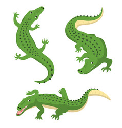 green alligators set wild animal isolated vector image
