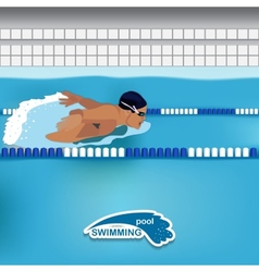Man is swimming in the pool vector image