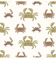 seamless pattern with various types crabs on vector image