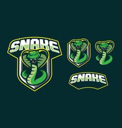 snake mascot logo design vector image