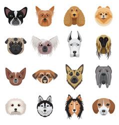 dog heads logo set emblem vector image