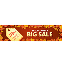 autumn big sale banner horizontal cartoon style vector image