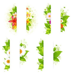 Collection of bunches of flowers and leaves with vector