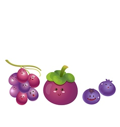 cute fruits grape mangosteen blueberry vector image