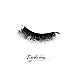 eyelash extension beautiful black long eyelashes vector image