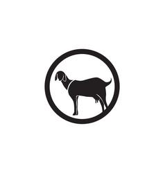 Goat black animals logo and symbols template vector