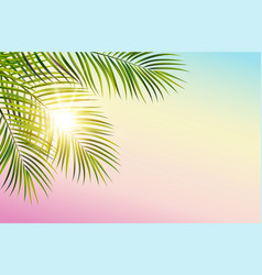 green leaf palm tree on white background vector image