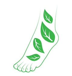 Human foot with leafs vector
