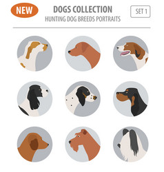 Hunting dog breeds set icon isolated on white vector