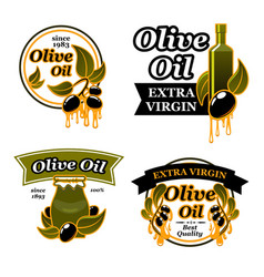 olive oil bottle label set with black fruit leaf vector image