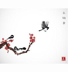 pine tree sakura cherry tree in blossom and vector image