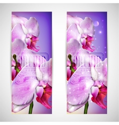 set of cards with blossom orchid vector image