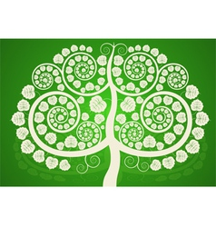 Silver Bodhi tree on a green background vector image