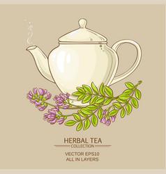 Astragalus tea vector