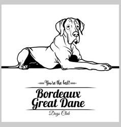 Bordeaux great dane dog vector