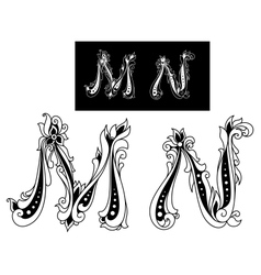 Capital letters M and N vector image