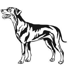 Decorative standing portrait of dog german vector