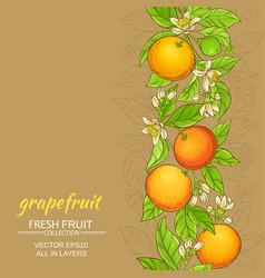 grapefruit pattern vector image