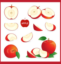 Set of red apple in pieces whole slice and half vector