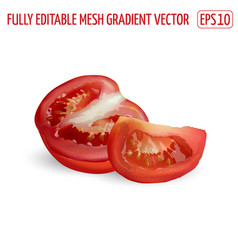 Sliced red tomato on a white background vector